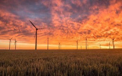 La nueva normalidad del mercado eléctrico